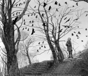crowcall